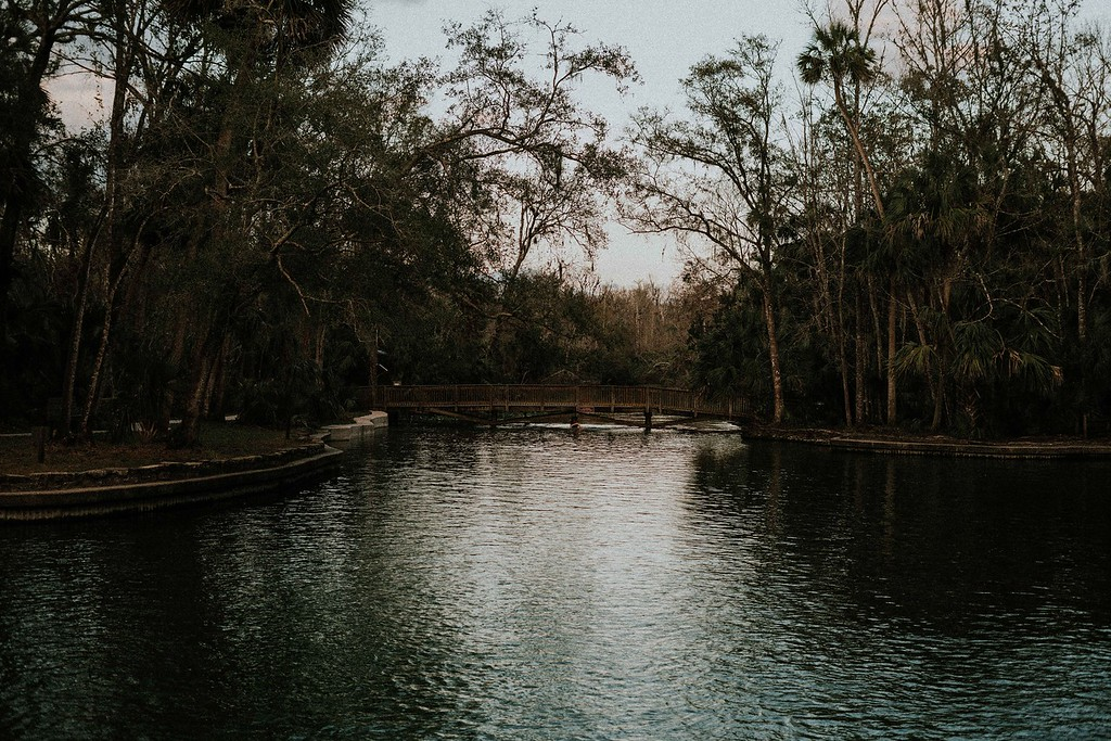 Wekiwa Springs State Park - Outdoor activities in Orlando