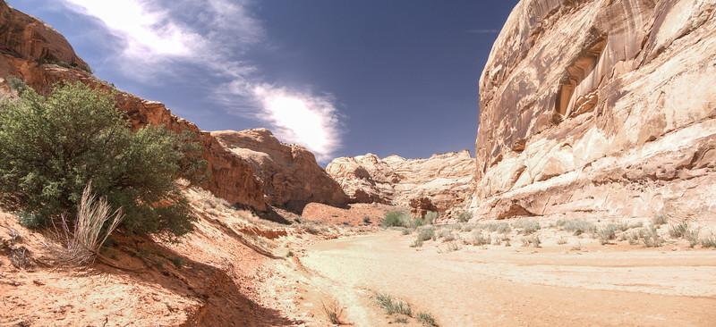 Horseshoe Canyon Wash i2.jpg