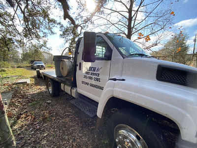 JKW Tree Removal and Stump Grinding
