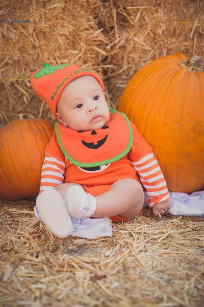 pumpkinpatrick-0002.jpg