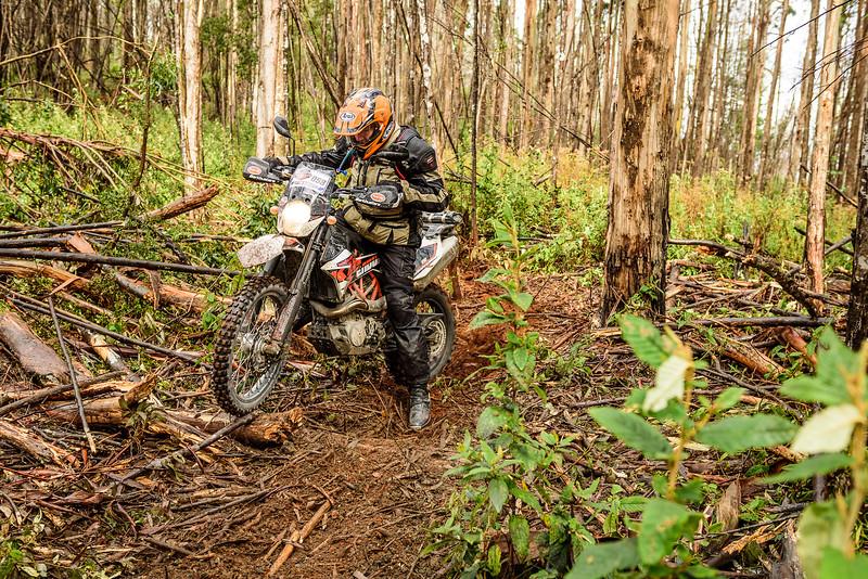 2019 KTM Australia Adventure Rallye (241).jpg