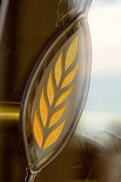 WheatGlass.jpg