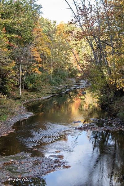 Black River 101320-1.jpg