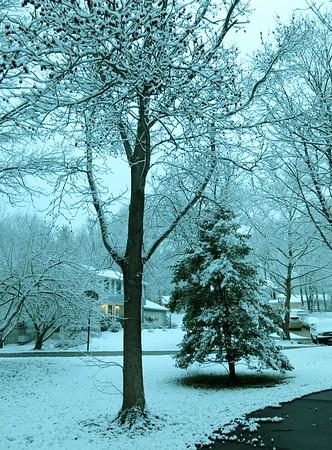 2016-03-04 Snowy March Morning