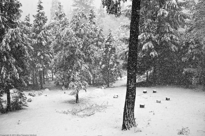 Snowfall at Shake Ridge