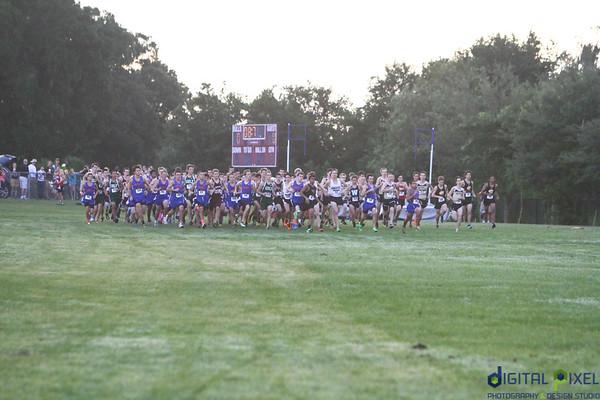 Wiregrass Ranch Run 2014