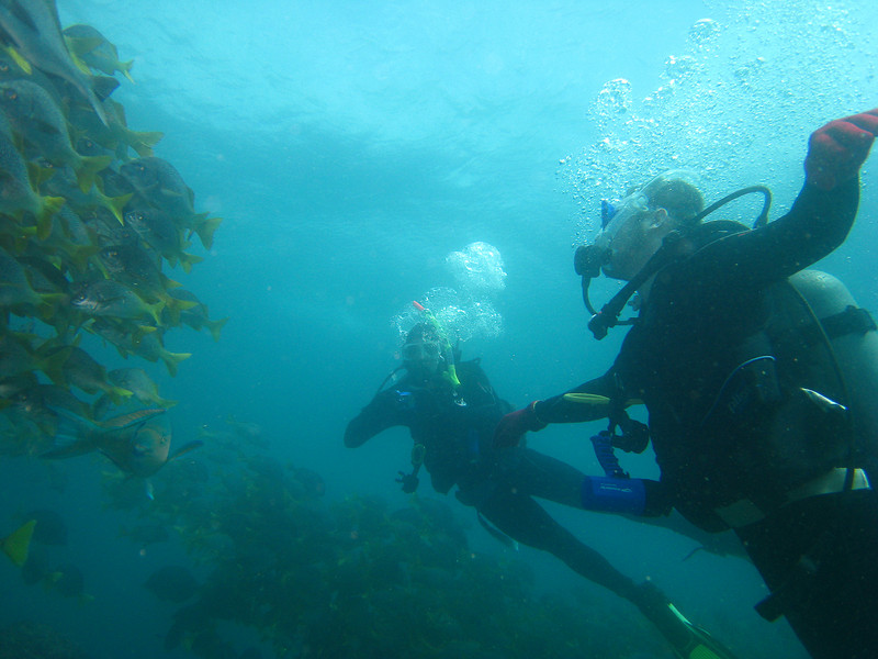 Diving in the Galapagos (102 of 392)