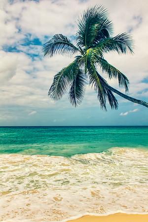 Barbados 6/2014