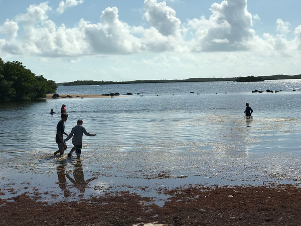 Key Largo Field Trip 2019