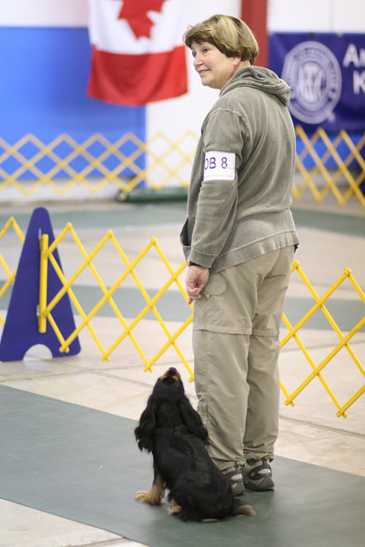 2008 COPS Specialty - Obedience and Rally