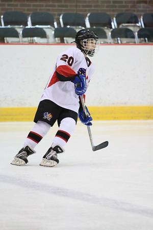 Game 3 - Aviator Hockey Club  Vs Port Huron Flags