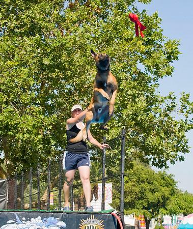 Calif. State Fair 7-17-2010