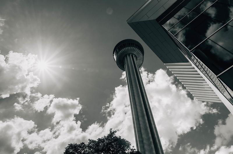 TOA Sunflare lookup bnw.jpg