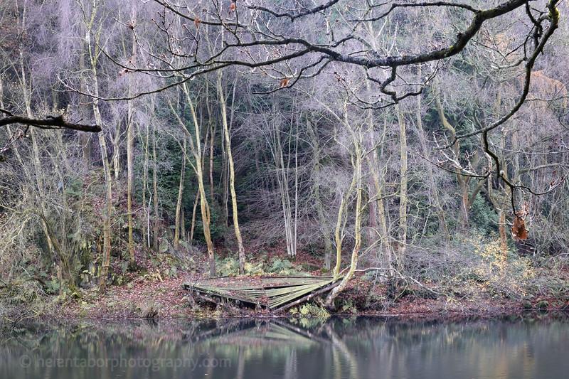Eavestone Lake-18.jpg