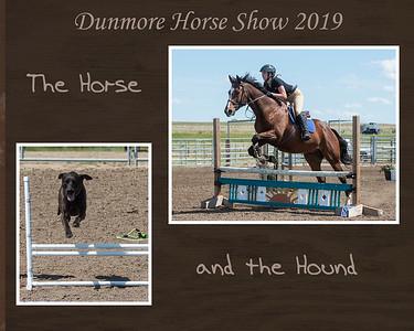 DES 2019 Horseshow - Horse and Hound