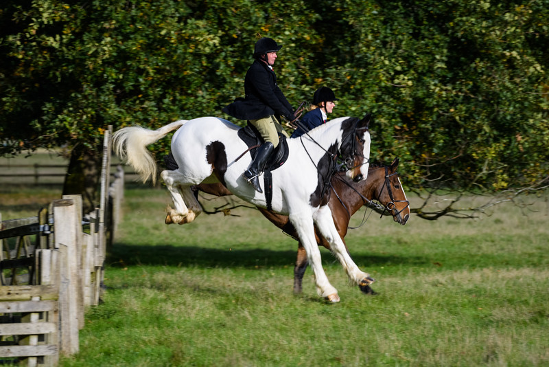 Fitzwilliam Opening meet Nov 2019-125-70.jpg