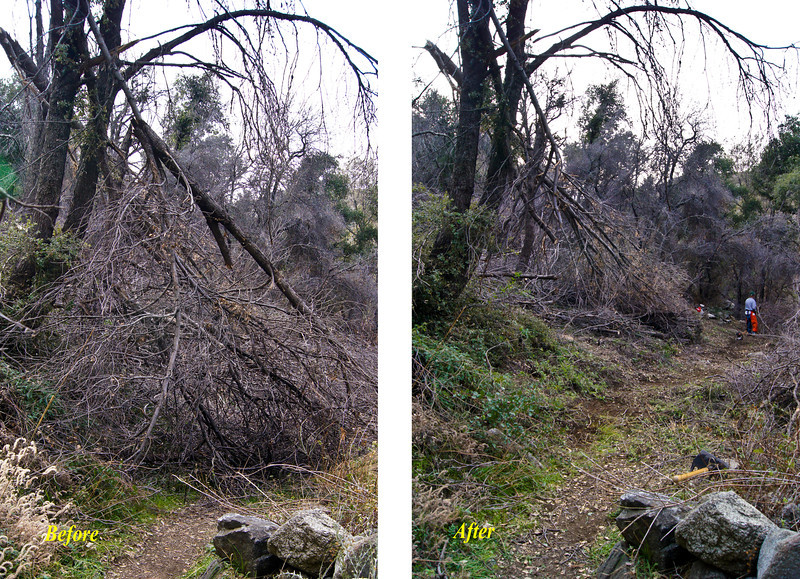 20120114014 - Gabrielino Near Switzers, before and after.jpg