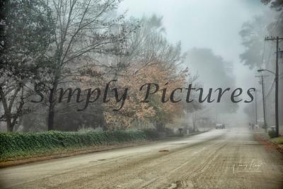 fog 0364