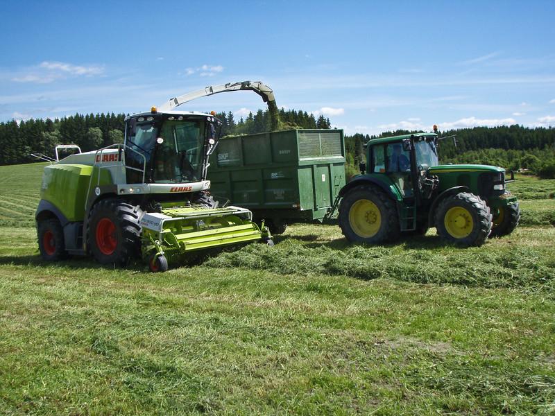 Grashøsting-39
