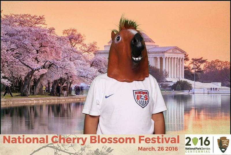 Boothie-NPS-CherryBlossom- (395).jpg