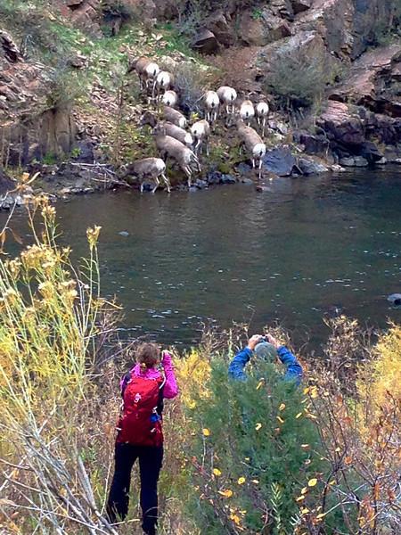 Waterton Canyon 039.jpg