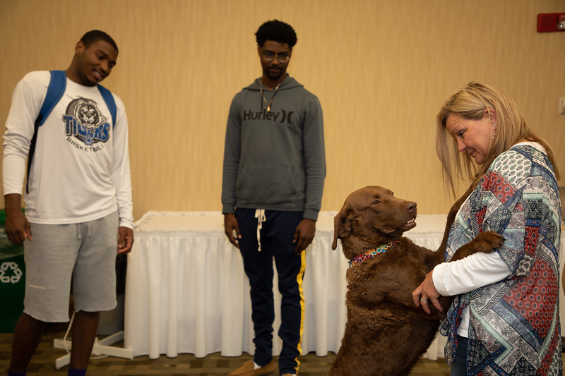 Therapy Dogs-8391.jpg
