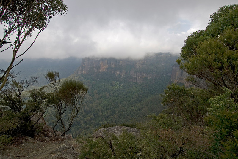 Cloudy Day 2, Blue Mountain National Park - NSW, Australia