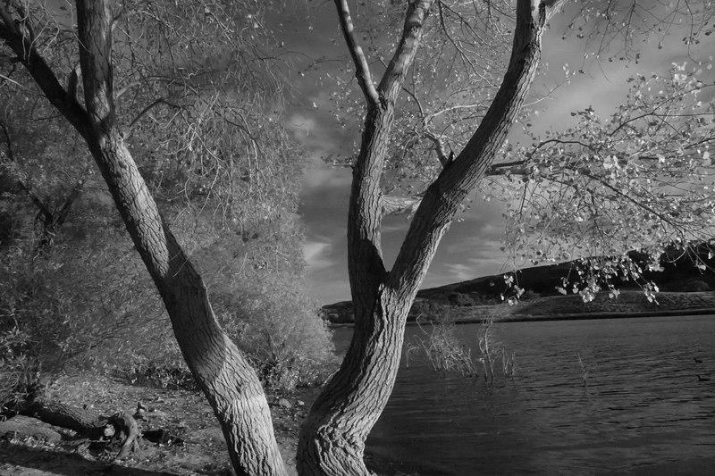 Lake Elizabeth 115_filtered.jpg