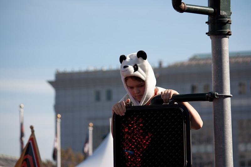 White Panda.jpg