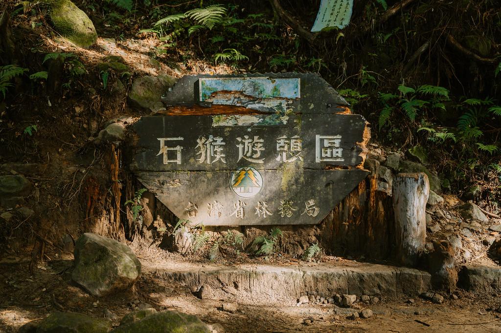 水漾森林健行紀錄與拍攝建議 by 旅行攝影師張威廉 Wilhelm Chang