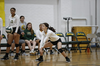Volleyball Playoffs vs St. Scholastica