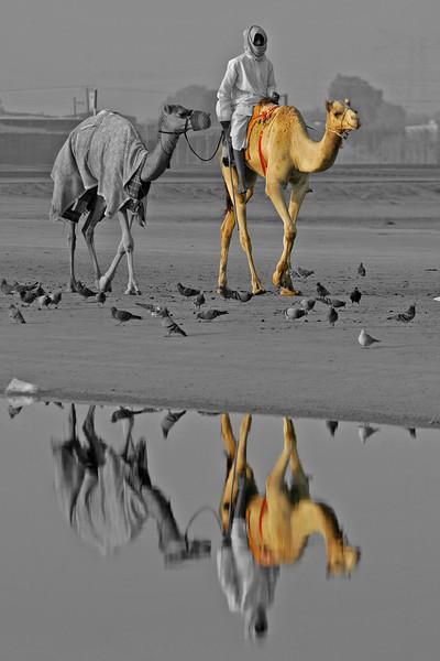 Dubai Scenes