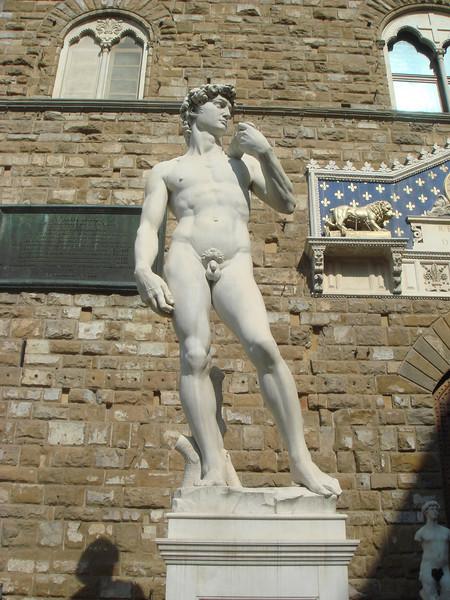 David in Piazza della Signoira 2.jpg