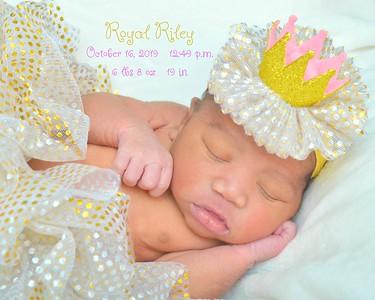Royal Riley 2019