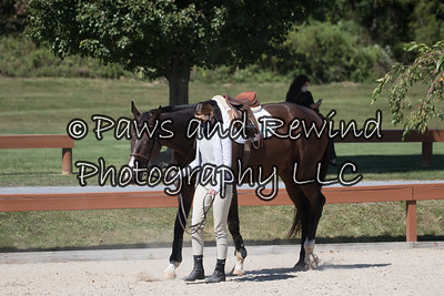 September 19 - 20 CPI New Jersey Clinic and Horse Show @ The Ridge