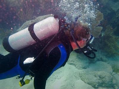 Diving Looe Key 2010