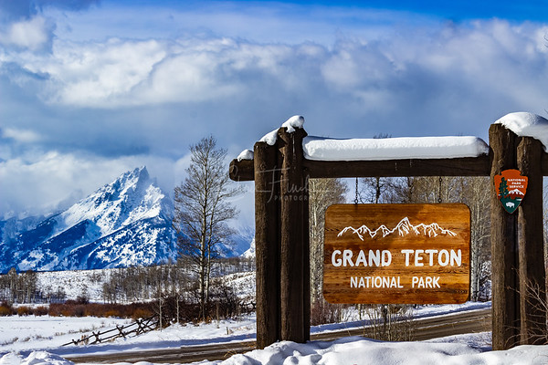 Grand Teton National Park and Neighboring National Forests 2018