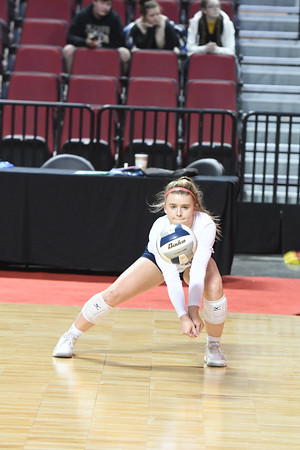 Varsity Volleyball at State Volleyball Tournament