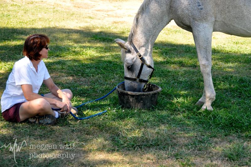 EB&Horses-018.jpg