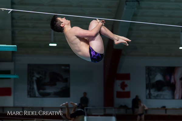 Broughton diving. January 14, 2019. 750_3030