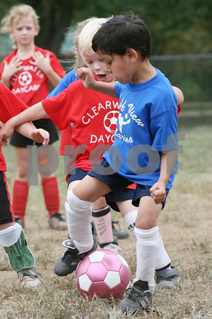 Clearwater Daycare vs. Bluff View Marina 09-19-09