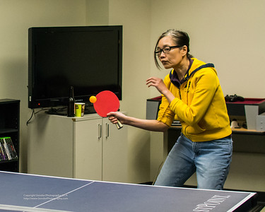 2014 March Social - Ping Pong Tournament!
