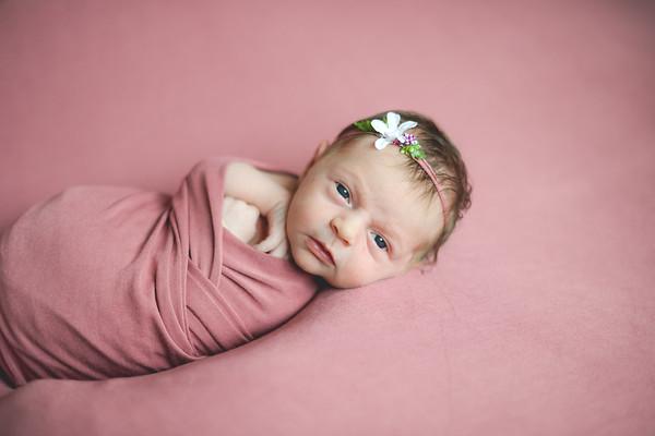 Newborn Elise K