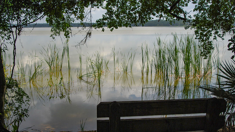 Bench overlooks Lake Beauclair