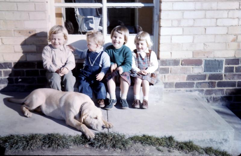 1960-7 (13) Joanne 5, Martin 1 yr 11 mths, Louise 4 & Debbie 3.JPG