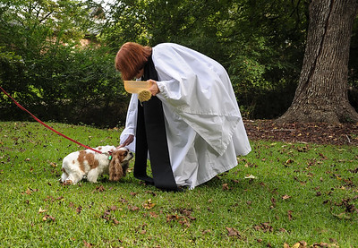 St Anne's Blessing Of The Animals