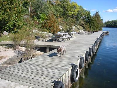 Lake Fall 02