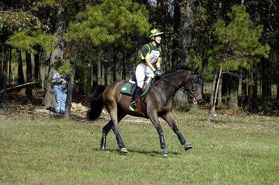 Rider 71