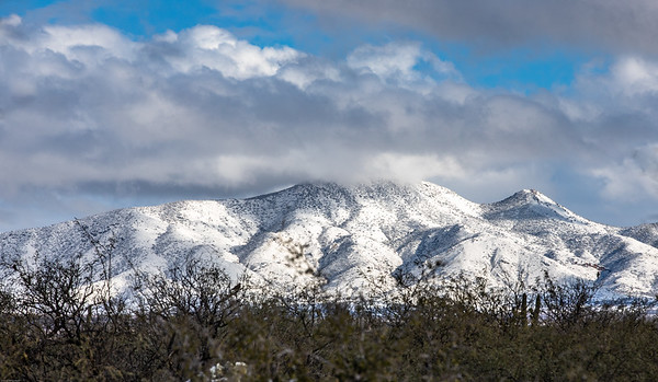 Santa Rita Mountain Snow 2019