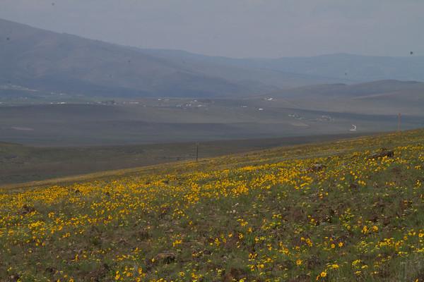 2015-04-03 Yakima Skyline Trail